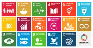 objectifs développement durable ONU